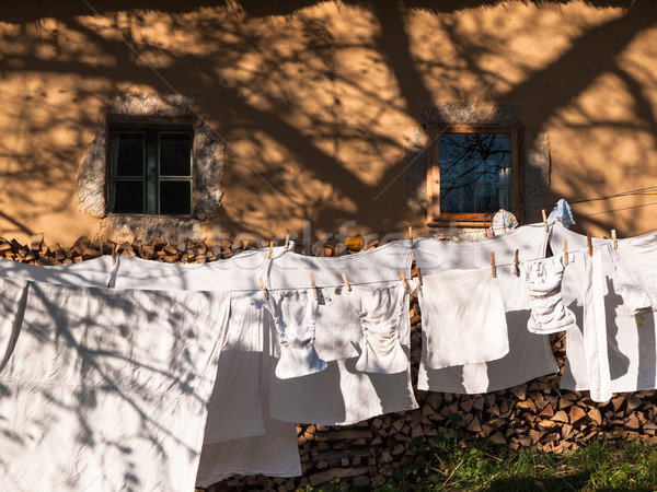 Baby clothes hanging on the clothesline Stock photo © hraska