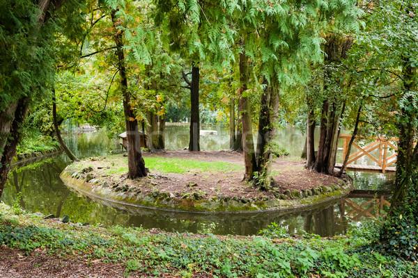 Formale giardino piccolo isola stagno ponte Foto d'archivio © hraska