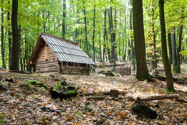 Peu chalet automne forêt paysage Photo stock © hraska