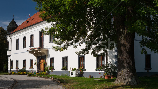 Historic building with flowers in the windows Stock photo © hraska