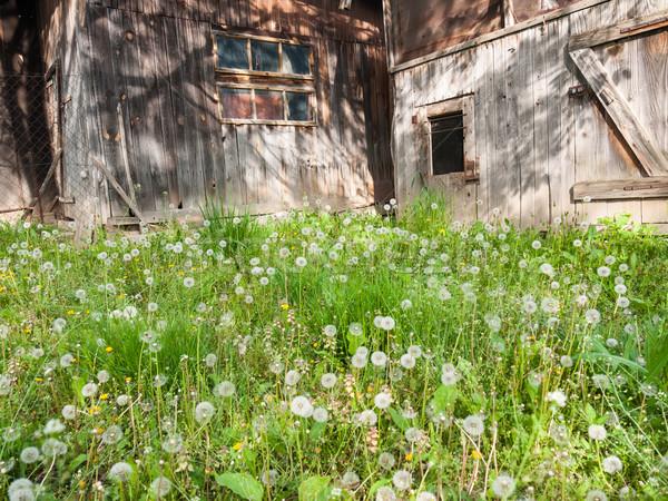 Old farm buildings Stock photo © hraska