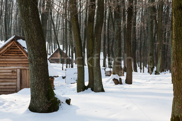 Wooden houses in snow covered forest Stock photo © hraska
