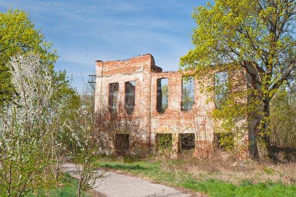 Noble house ruin Stock photo © hraska