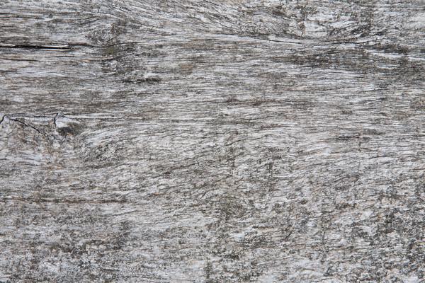 Szürke fából készült öreg szürke színes mintázott Stock fotó © hraska