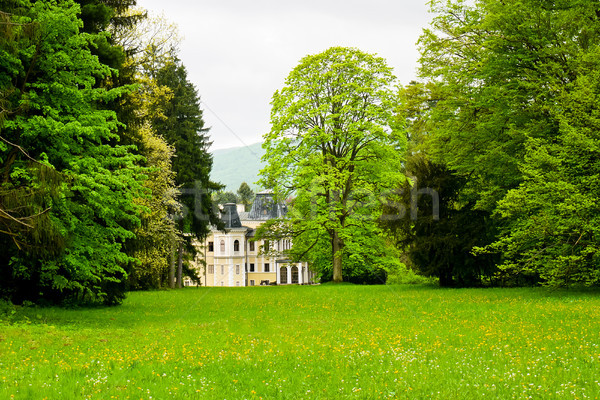 Mansion in the park Stock photo © hraska