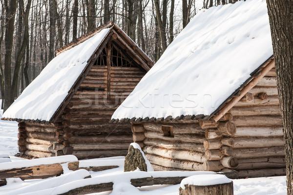 Sneeuw twee huizen ijzig bomen Stockfoto © hraska