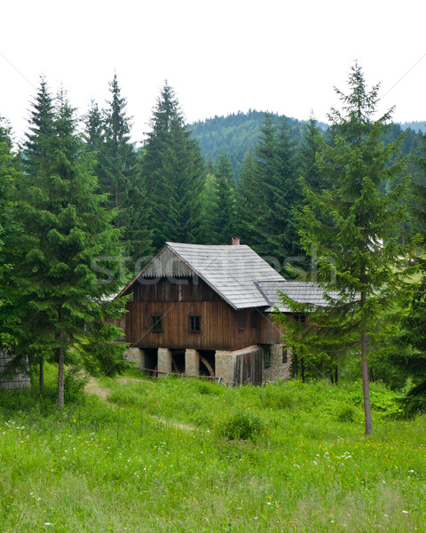 Old watermill Stock photo © hraska