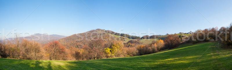 Automne panoramique vue ciel arbre Photo stock © hraska