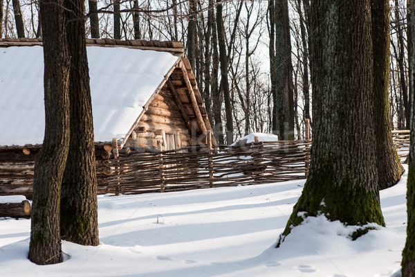 Sunny view of cottage in winter countryside Stock photo © hraska