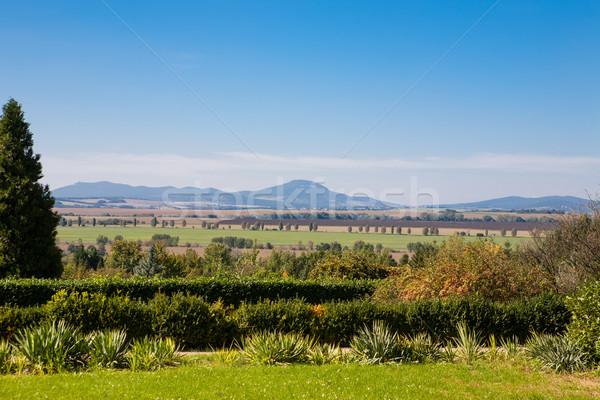 Tuin algemeen mooie groene Stockfoto © hraska