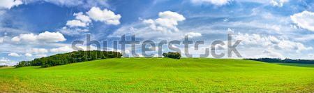 Field and an amazing sky Stock photo © hraska