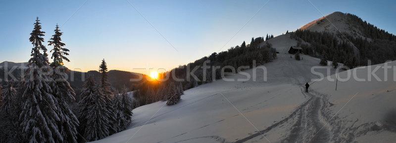 Tramonto montagna panorama turistica montagna albero Foto d'archivio © hraska