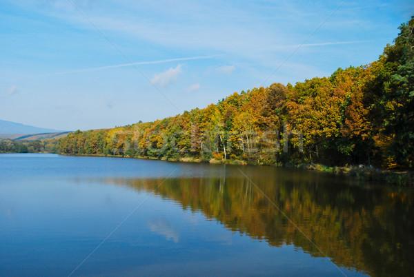ősz tó gyönyörű színes erdő tükröződések Stock fotó © hraska