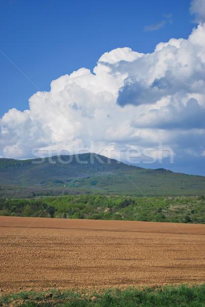 Scenario coltivato suolo piedi montagna Foto d'archivio © hraska