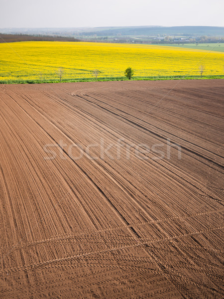 Plowed field in spring-time with tractor tyre track Stock photo © hraska