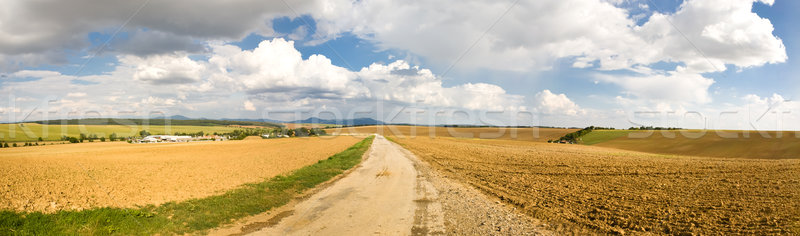 Horyzoncie panorama rolniczy krajobraz pola Zdjęcia stock © hraska