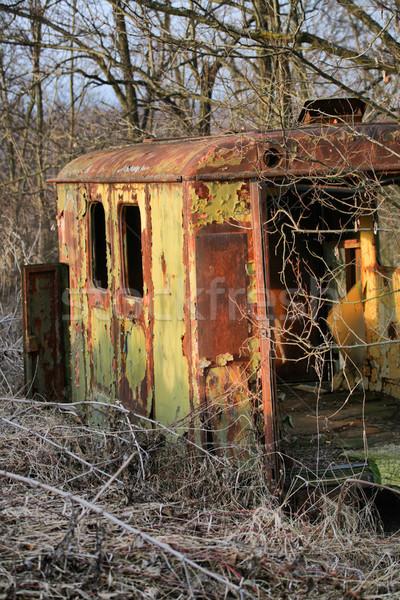 Stock fotó: Elhagyatott · hosszú · elfeledett · erdő · függőleges · kilátás