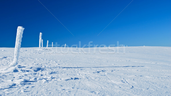 Winter signs Stock photo © hraska