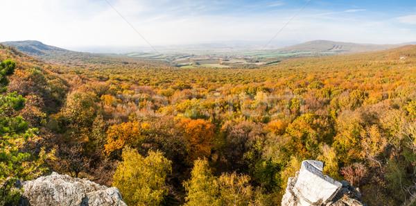 ősz erdő völgy panoráma égbolt fa Stock fotó © hraska