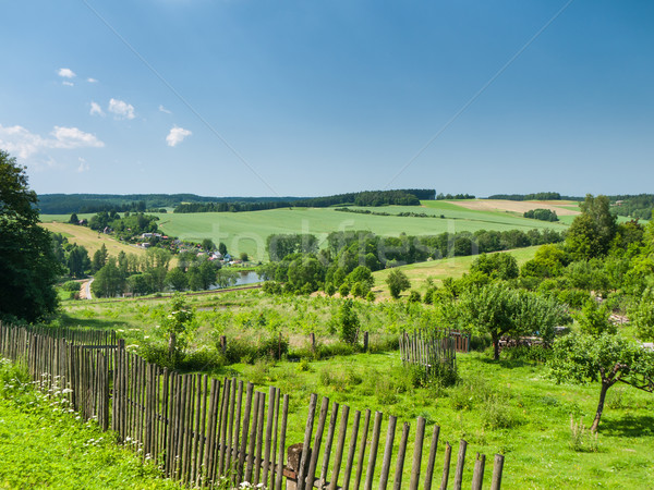 Rural scene with gardens Stock photo © hraska