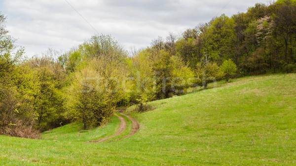 Weide land rand bos Stockfoto © hraska