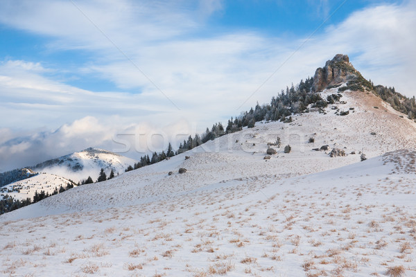 Mountain perspective Stock photo © hraska