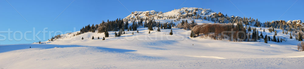 Snow fields Stock photo © hraska