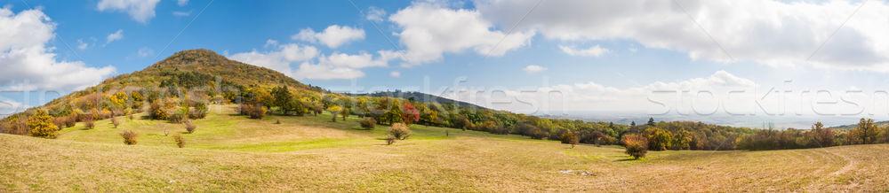 Coloré automne forêt prairie paysage panorama Photo stock © hraska