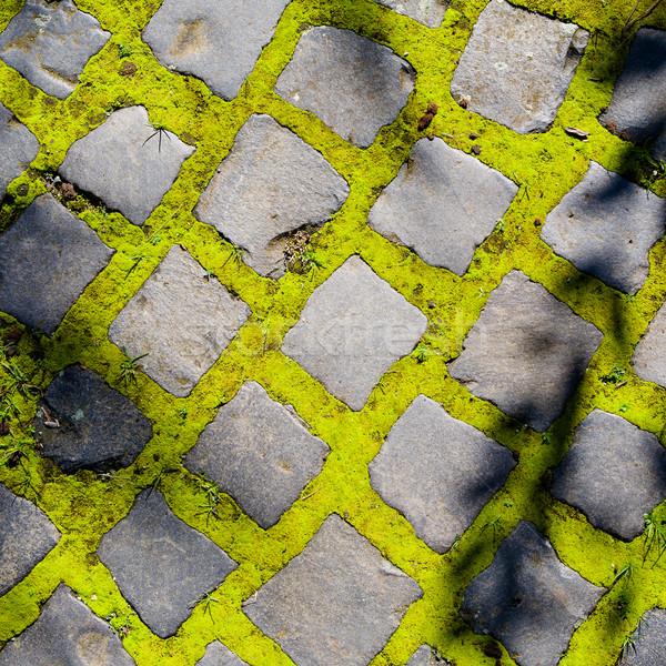 Cobbles with moss Stock photo © hraska