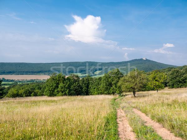 Lane in meadow Stock photo © hraska
