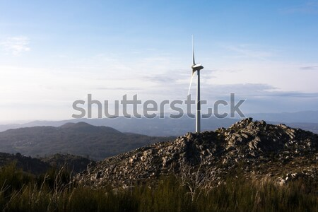 Wind energy turbines Stock photo © hsfelix