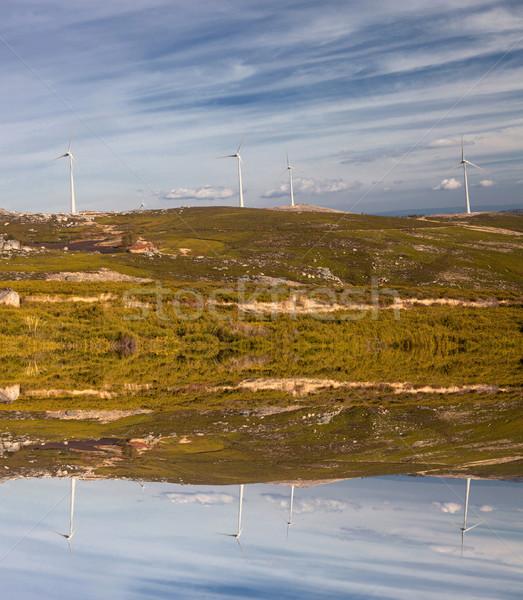Szélturbinák fehér felső hegy természet mező Stock fotó © hsfelix