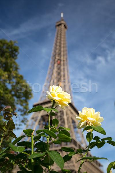 Paris - Best city in Europe Stock photo © hsfelix