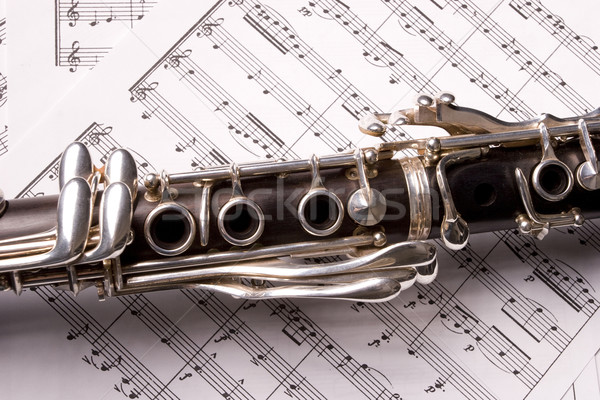clarinet isolated Stock photo © hsfelix