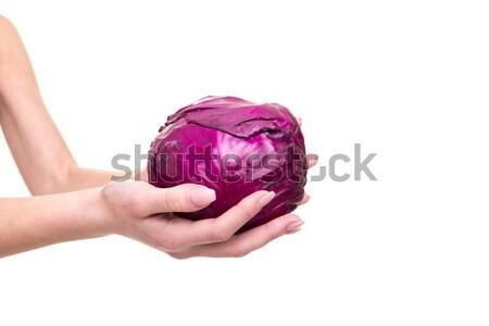есть овощей свежие Purple Сток-фото © hsfelix