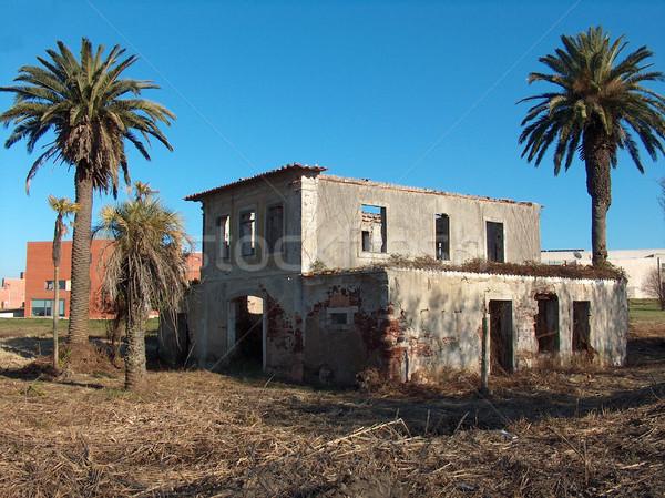 Casa velha ruínas palms blue sky céu casa Foto stock © hsfelix