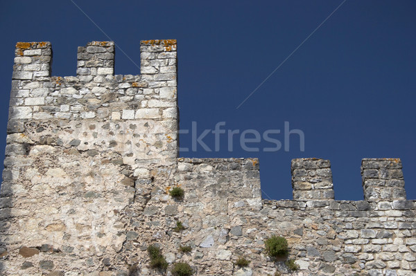 Castle wall and defensive tower, isolated Stock photo © hsfelix