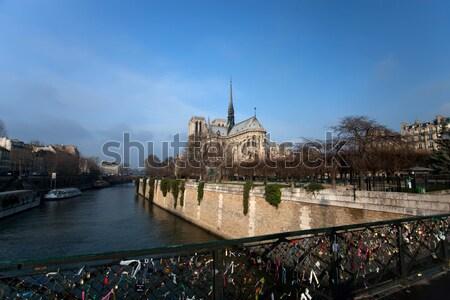 Notre Dame of Paris Stock photo © hsfelix
