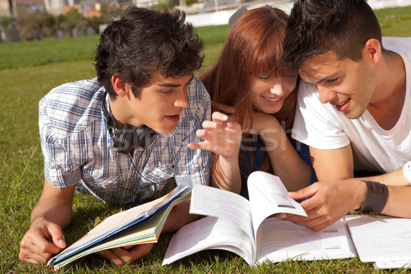 Amigos grupo estudar parque mulher menina Foto stock © hsfelix