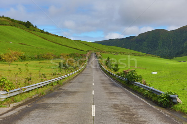 Empty roads in the countryside - Azores - Portugal Stock photo © hsfelix