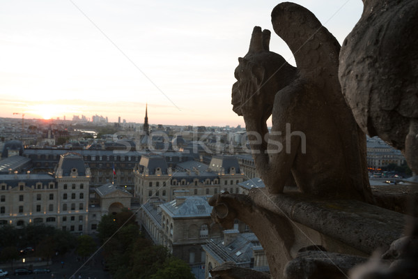 Chimeras of Notre Dame Stock photo © hsfelix
