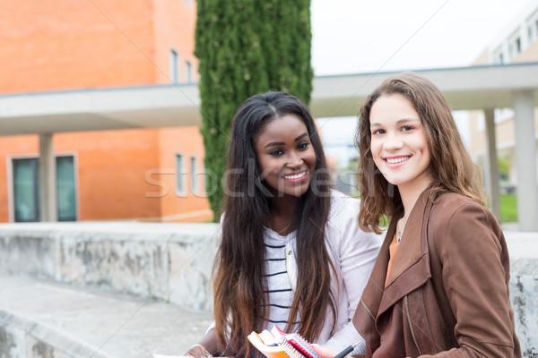 Másik nap egyetem csoport többnemzetiségű fiatal Stock fotó © hsfelix