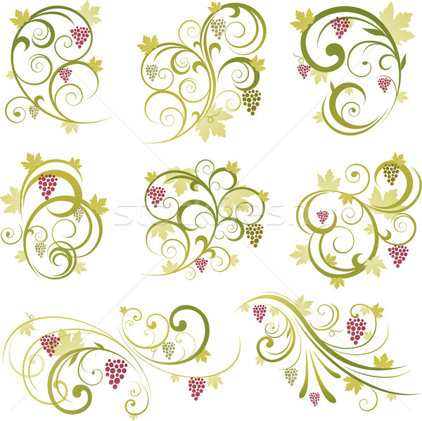 набор вино дизайна Элементы лист фон Сток-фото © hugolacasse