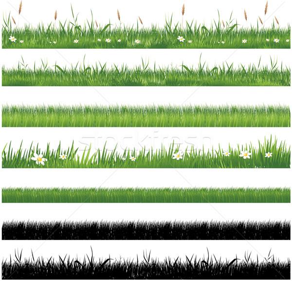 Zielona trawa kolekcja trawy lata muzyka roślin Zdjęcia stock © hugolacasse