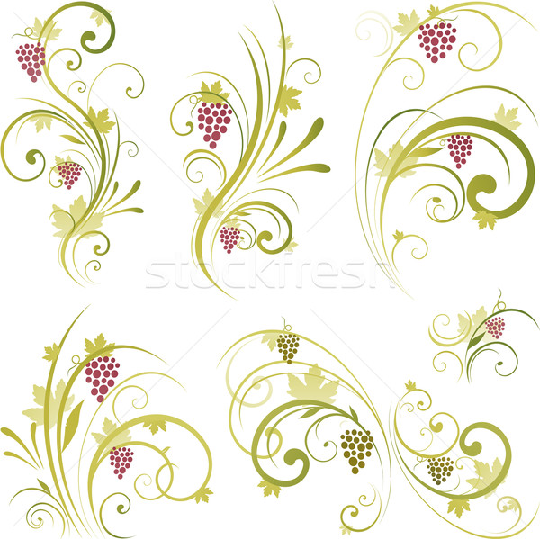 Wine design ornament Stock photo © hugolacasse