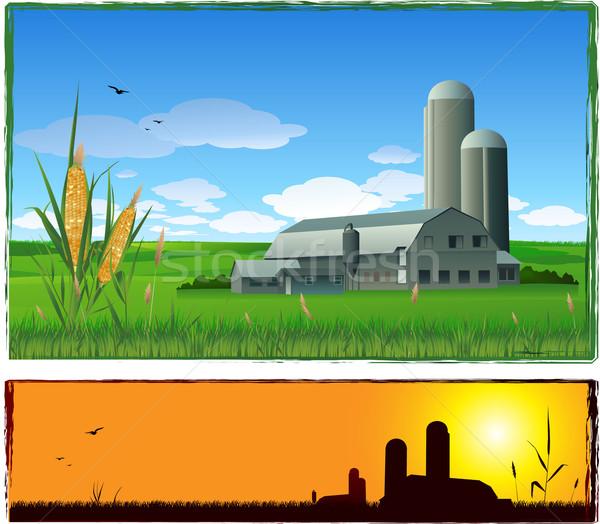 фермы урожай иллюстрация небе солнце области Сток-фото © hugolacasse