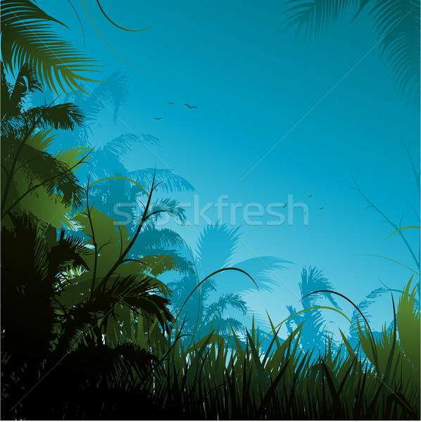 Stock foto: Dschungel · Illustration · Blume · Wald · Sonnenuntergang · Hintergrund