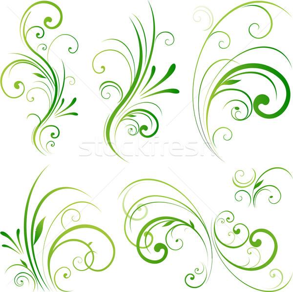 Beleza floral fronteira natureza verde cor Foto stock © hugolacasse