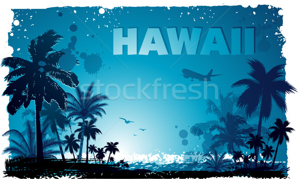 Tropical hawaiian background Stock photo © hugolacasse