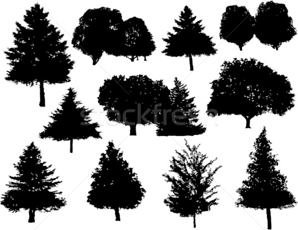 Drzewo sylwetki kolekcja zestaw drewna lasu Zdjęcia stock © hugolacasse